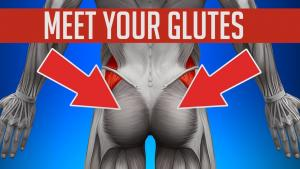 Finding Your Glutes